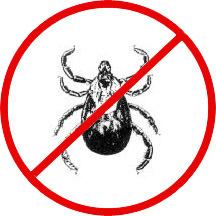 no-ticks.jpg